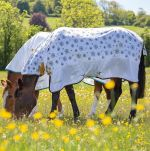 Shires Tempest Original Dandelion Fly Combo