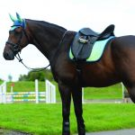 Weatherbeeta Prime Ombre Dressage Saddle Pad - Oceans Reef