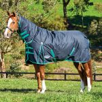 Weatherbeeta ComFiTec Classic Combo Medium Turnout