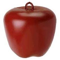 Horseman's Pride Jolly Pets Jolly Apple