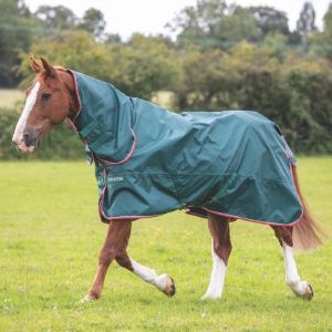 Shires Typhoon Lite Combo Turnout Rug