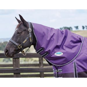 Weatherbeeta Comfitec Plus Dynamic Neck Rug