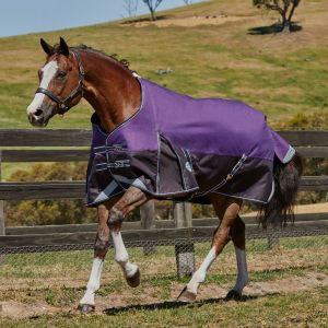 Weatherbeeta ComFiTec Plus Dynamic Standard Neck Turnout
