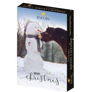 Lincoln Snowman Advent Calendar