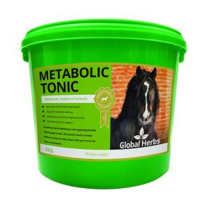 Global Herbs Metabolic Tonic - 1Kg