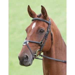 Shires Salisbury Brackley Bridle