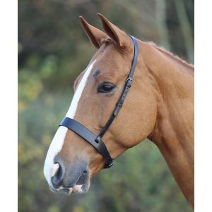 Shires Blenheim Hunter Cavesson Noseband