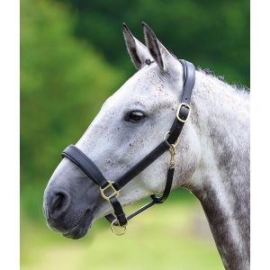 Shires Blenheim Leather Travel Headcollar