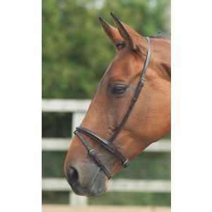 Shires Blenheim Flash Noseband