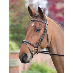 Shires Rossano Padded Raised Flash Bridle
