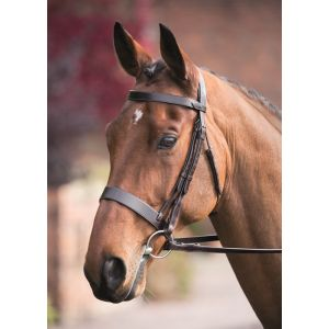 Shires Rossano Hunter Cavesson Bridle