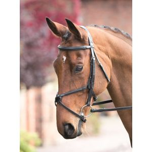 Shires Rossano Grackle Bridle