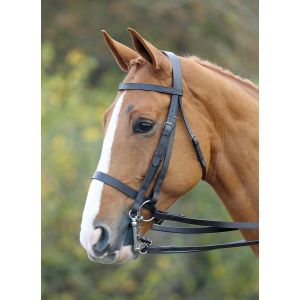 Shires Aviemaore Double Bridle