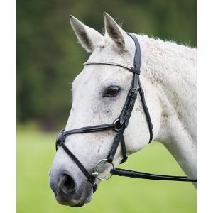 Shires Aviemore Diamante Mexican Bridle