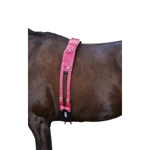 Kincade Brights Deluxe Equigrip Lunge Roller