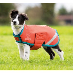 Digby & Fox Waterproof Dog Coat