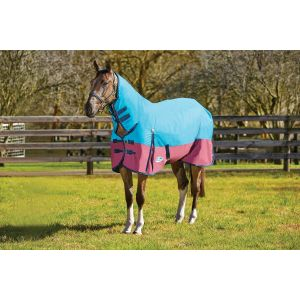 Weatherbeeta ComFiTec Classic Combo Medium Turnout - Pony