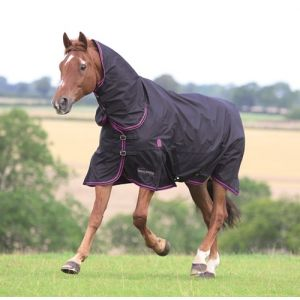 Shires Highlander Original Lite Combo