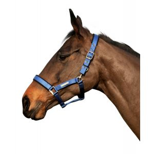 Cottage Craft Turnout-Safe Headcollar