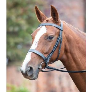 Shires Avignon Hunter Cavesson Bridle