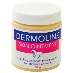 Dermoline Skin Ointment 100gm
