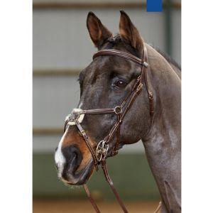John Whitaker Valencia Anatomic Mexican Bridle
