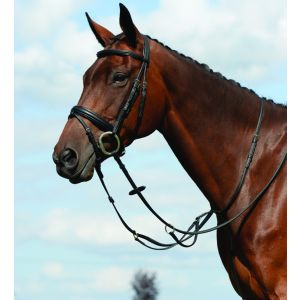 Collegiate Syntovia+ Plain Flat Running Martingale