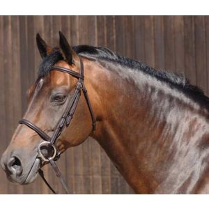 Caldene Plain Raised Snaffle Bridle with Reins