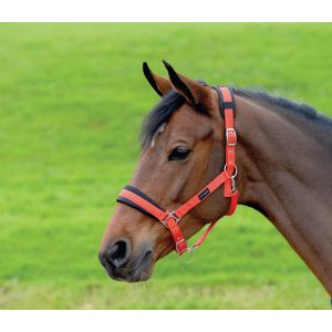 Cottage Craft Padded Headcollar