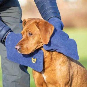 Digby & Fox Dog Towel Glove - Navy