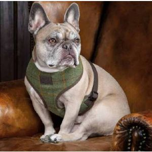 Digby & Fox Tweed Dog Harness