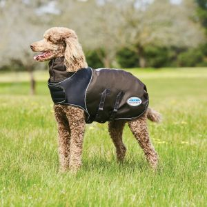 Weatherbeeta ComFITec Ultra Cozi Dog Coat - Medium/Lite