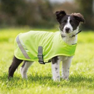 EQUI-FLECTOR Dog Safety Vest