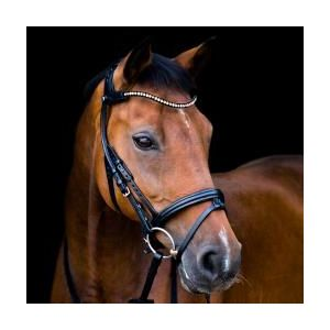 Stubben Freedom Magic Tack Bridle