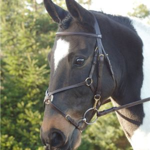 GFS Grackle Noseband