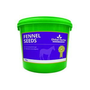 Global Herbs Fennel - 1kg