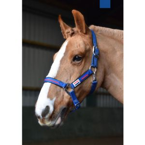 John Whitaker London Headcollar