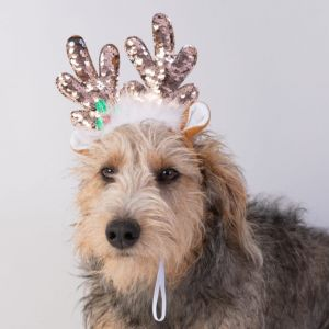 House of Paws Sequin Reindeer Headband for Dogs