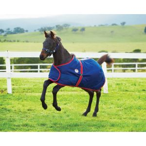 Weatherbeeta 1200D Adjustable Foal Standard Neck