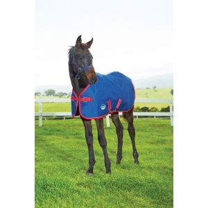 Weathebeeta Original 1200D Foal Standard Neck