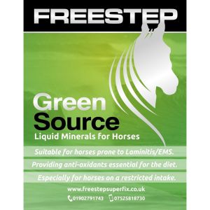 Freestep Green Source 1L