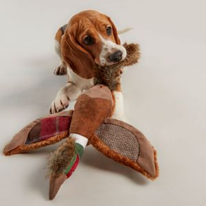 Joules Pheasant Dog Toy - Brown