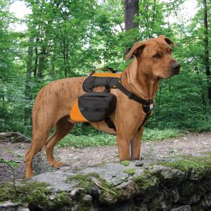 Kurgo Big Baxter Backpack - Black/Orange - 22-50kg