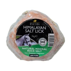 Lincoln Himalayan Salt Lick