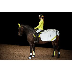 Harry Hall Hi Viz Quarter Sheet