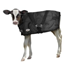 Neogen Calf Sense Calf Warming Blanket