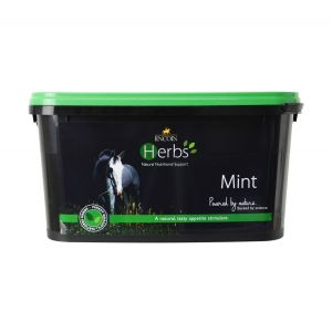 Lincoln Herbs Mint 600gm