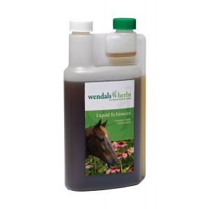 Wendals Liquid Echinacea 1L