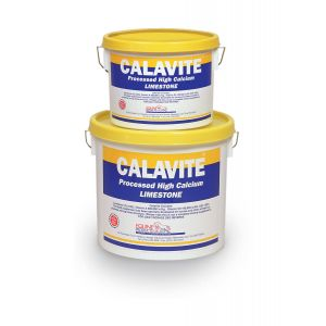 Calavite