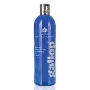 Carr & Day & Martin Gallop Colour Shampoo - 500ml